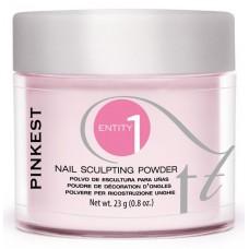 Entity, Пудра акриловая Ярко- розовая Pinkest Pink 23 гр