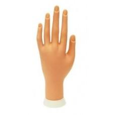 Муляж руки для маникюра и наращивания